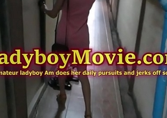 Thai tgirl Am strokes their way learn of house unassisted
